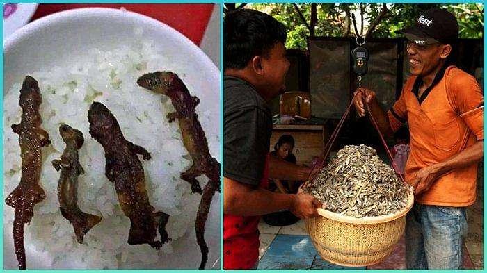 Vietnam disebut-sebut sebagai surganya makanan aneh di dunia. Salah satu makanan yang paling terkenal adalah nasi cicak panggang, yang cukup populer di sana.
