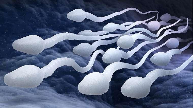 kontrasepsi, seks, kb, perempuan, kelahiran, kondom, vasektomi