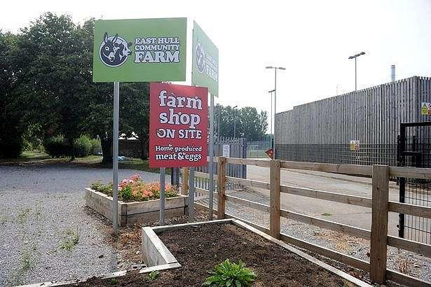East Hull Community Farm dituding menjadi penyebab gangguan ratusan lalat yang masuk ke rumah-rumah.