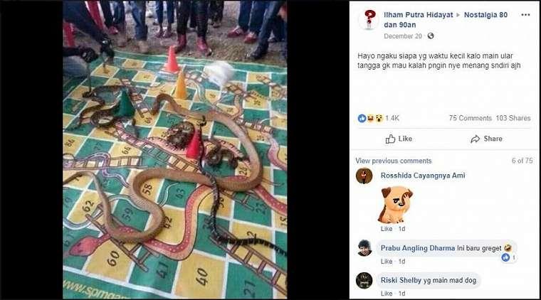 Permainan Ular Tangga dengan ular asli, greget abis. (Facebook/Ilham Putra Hidayat, Nostalgia 80 dan 90an)