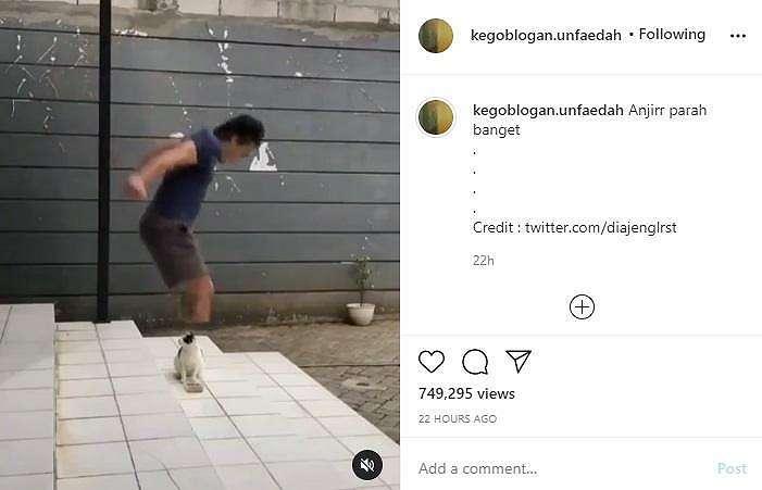 Aksi pria prank kucing. (instagram/kegoblogan.unfaedah)