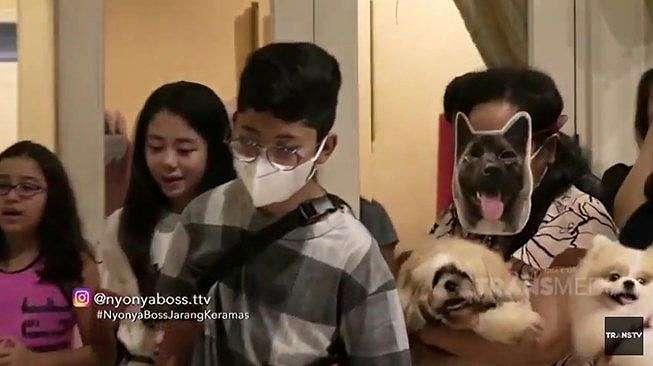 Potret meriah pesta ulang tahun anjing Nia Ramadhani, Maximus Bakrie. (YouTube/TRANS TV Official)