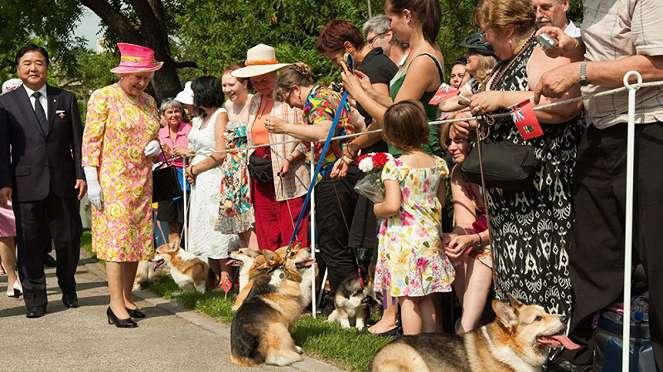 Ratu Elizabeth dan anjingnya