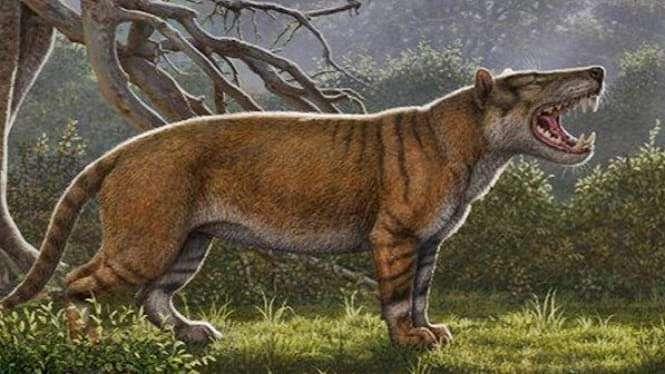 Ilustrasi kucing prasejarah.
