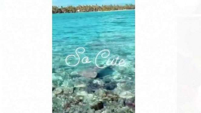 Syahrini dan Reino liburan di Bora Bora