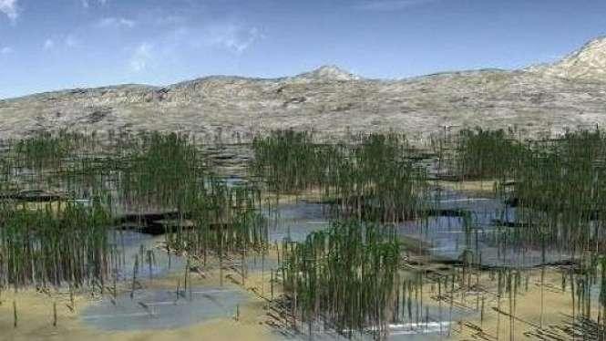 ilustrasi hutan tertua di dunia