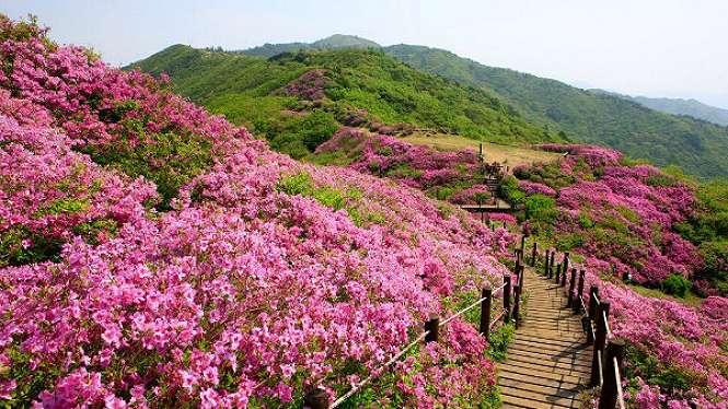Jirisan Cheonwangbong  Gyeongnam