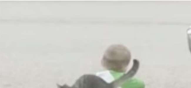 Momen Menggemaskan Saat Seekor Kucing yang Ramah Menghibur Anak Kecil yang Sedang Sedih Duduk di Pinggir Jalan