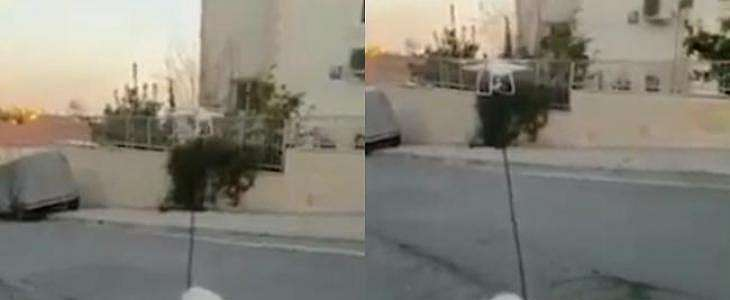 Social Distancing, Pria Ini Ajak Jalan-jalan Anjingnya Pakai Drone