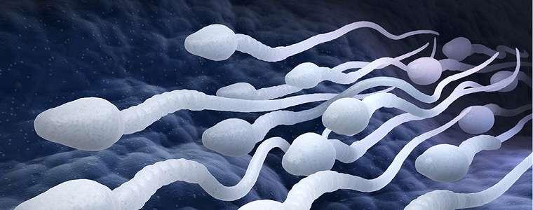 Apakah 'alat kontrasepsi pria pertama' di dunia akan berhasil?