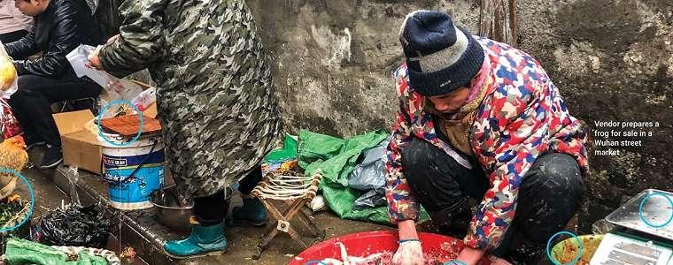 Ngeri, Ini Wujud Pasar Hewan di Wuhan Biang Keladi Virus Corona
