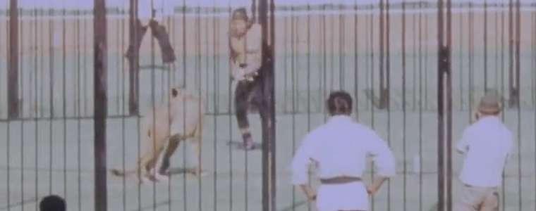 Video Pegulat vs Singa di Stadion GBK, 100 Ribu Penonton Kecewa