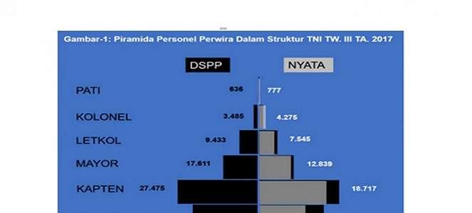 Surplus Jenderal TNI, Apa Sebabnya?